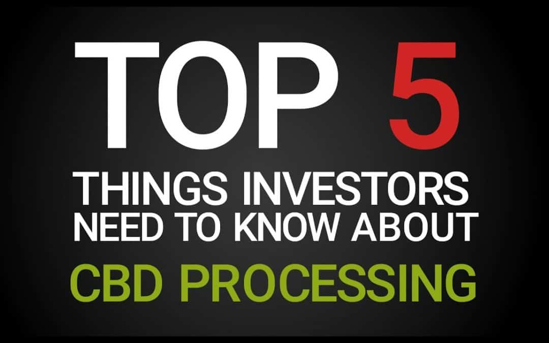 Top 5 Things Investors Need to Know About CBD Processing | Podcast